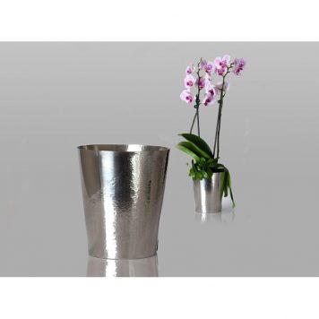 Ytterkruka, orkidé